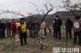 韩城市板桥镇:花椒培训聚人心 齐心协力促脱贫