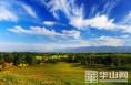 大荔县:深挖县域资源 依托黄河走绿色高效发展之路