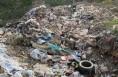 关于临渭区下邽镇凹里张村垃圾乱倒 影响村民生活的问题(已回复)