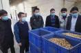 澄城县领导带队赴安徽亳州考察中医药产业发展情况