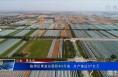 临渭区果业总面积43万亩 总产值达37亿元
