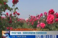 华州区下庙镇:发展特色种植养殖 打造田园综合体