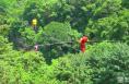 《瞰渭南》少华山:高空走钢索 惊险人震撼