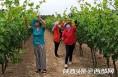 为50多名留守女性送上种植技术 华阴妇联带村民脱贫致富