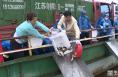 合阳县举行增殖放流活动 25万尾鱼苗放入黄河