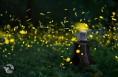 见过萤火虫的精灵王国吗?首降渭南,美爆了!