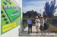 行走黄河 | 4条支流从合阳入黄 治理农村污水就是保护黄河