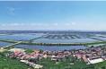 黄河岸边是家乡