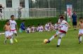 西北最大足球草坪培育基地与足球训练基地在大荔县落户