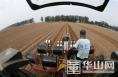 大荔农民利用北斗卫星导航种萝卜