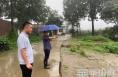 华州区大明镇:汛情就是命令 坚守就是使命