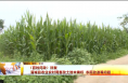 《百姓问政》回复 蒲城县农业农村局整改土地未确权 农厕改造等问题