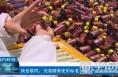 【渭南科技】陕西联同:完善酵素使用标准 促进产业发展新风向