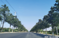 华阴市住建局:实施雨水管网改造  改善城市人居环境