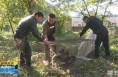 《直通县市》华州区林业局成功救助国家一级保护动物金雕