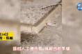 韩城适时人工增雨雪  缓解当前旱情