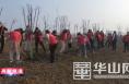 【高新报道】春意盎然共添新绿—渭南高新区开展义务植树造林活动