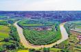 湿地绿浓鸥鹭飞——渭南扎实推进湿地保护工作纪实