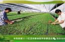 中央财政50.9亿支持耕地轮作休耕试点