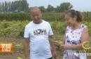 渭南市第二届最美职业农民候选人事迹展播 |