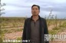 《百姓问政》回复:合阳县退耕还林林地套种问题得到整改