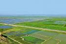 蒲城县开展实施石渣厂生态环境治理恢复工程