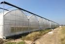 冷空气持续影响 设施农业注意防范