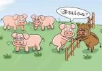 西安进入大量瘟疫猪?宝鸡有人感染死亡?农业农村部和网警的通报都来了!
