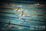 全国春季游泳锦标赛第二日 产生21块奖牌