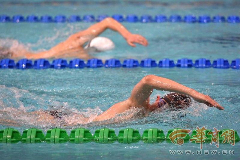 游泳,专业.蝶泳!2017春季蛙泳锦标赛渭南落幕加拿大冰球队23人图片