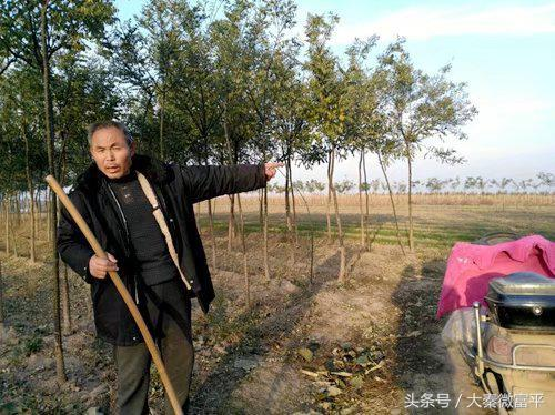 富平县淡村镇有个盘龙湾
