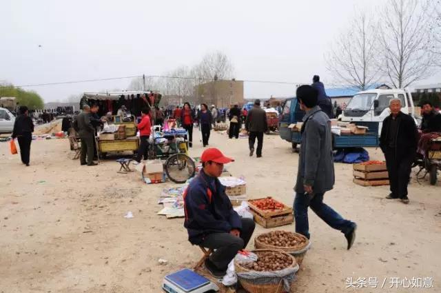 """陕西渭南临渭区各个乡镇""""上会""""时间表"""
