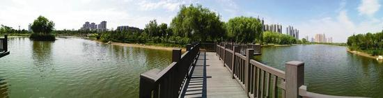 咸阳湖湿地公园,为市民提供了充足的亲水空间。