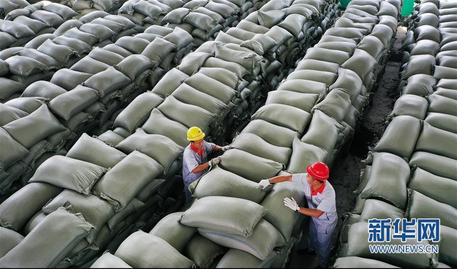 (经济)(6)陕西华州:小小花椒树 致富大产业