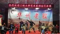 看皮影戏 体验乡村文化 20多名大学生感受华州皮影独特魅力!
