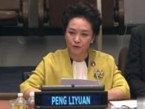 彭丽媛在联合国发表英文演讲