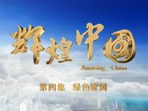《辉煌中国》 第四集 绿色家园
