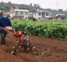 别等了 快去春耕!疫情下八条措施保农业生产