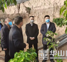 澄城县庄头镇:查看疫情防控 指导春季农业生产