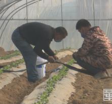 【战疫情  渭南力量】华州区下庙镇:春播春灌正当时 防疫生产两不误