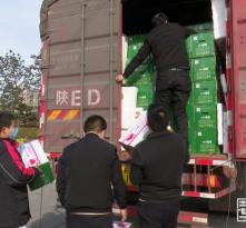 华州区为湖北省宜昌市西陵区捐赠800箱华州蔬菜