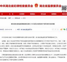 湖北省红十字会3名领导被问责