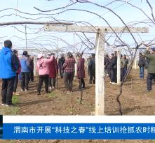 """渭南市开展""""科技之春""""线上培训抢抓农时精准服务"""