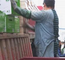 渭南市华州区4500箱蔬菜90万元防疫物资捐赠湖北黄麻老区