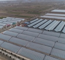 《战疫情 渭南在行动》我市各地农业园区积极复工复产 发展产业助脱贫