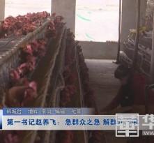 《第一书记风采》第一书记赵养飞:急群众之急 解群众之困
