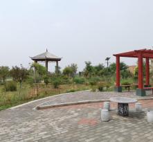 《走向我们的小康生活》陕西合阳县:好政策打开致富门