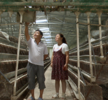 《走向我们的小康生活》陕西渭南市华州区吉亚峰:夫妻同心 其利断金