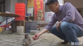 """《保护秦岭野生动物资源 促进人与自然和谐》韩城:国家""""三有""""保护动物鸊鹈受伤 救助后被放生"""