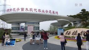 临渭区开展文明旅游志愿服务活动